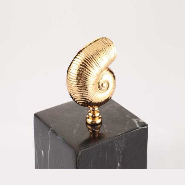 Nautilus Siyah Dekoratif Kup 2