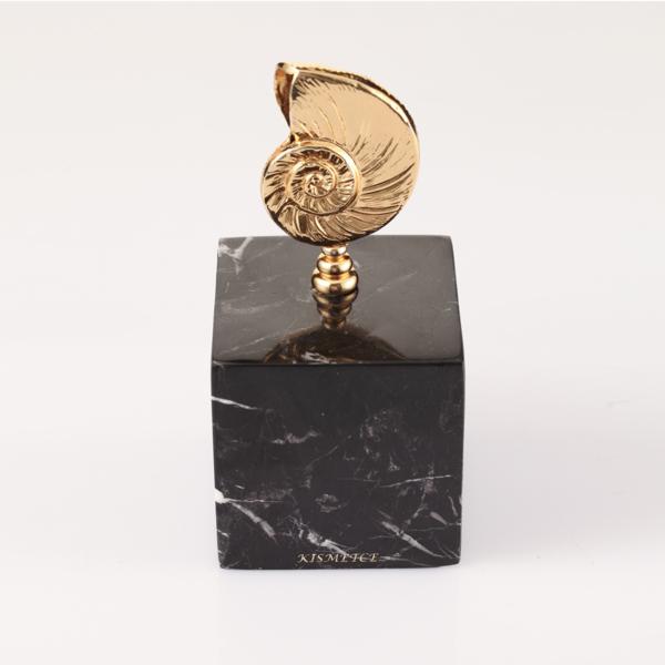 Nautilus Siyah Dekoratif Kup 3